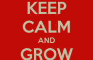 How To Be  A Grown Up Trader