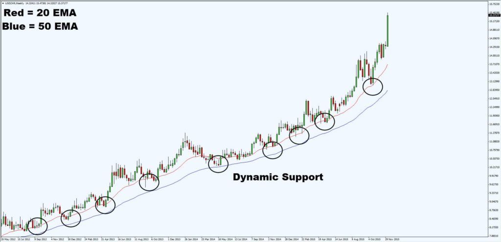 dynamic support2