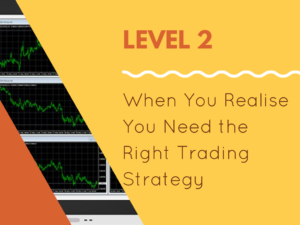 Trading Experience
